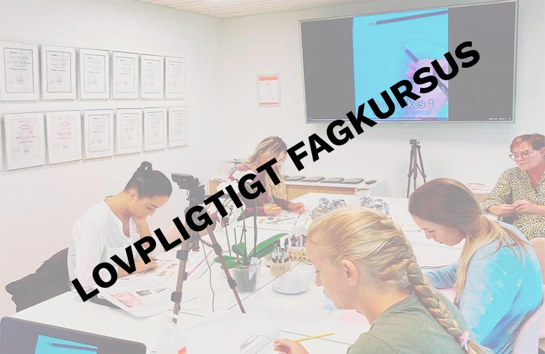 Lovpligtigt fagkursus (for personer der IKKE er uddannet hos Dermatech-Group eller PMU-line)