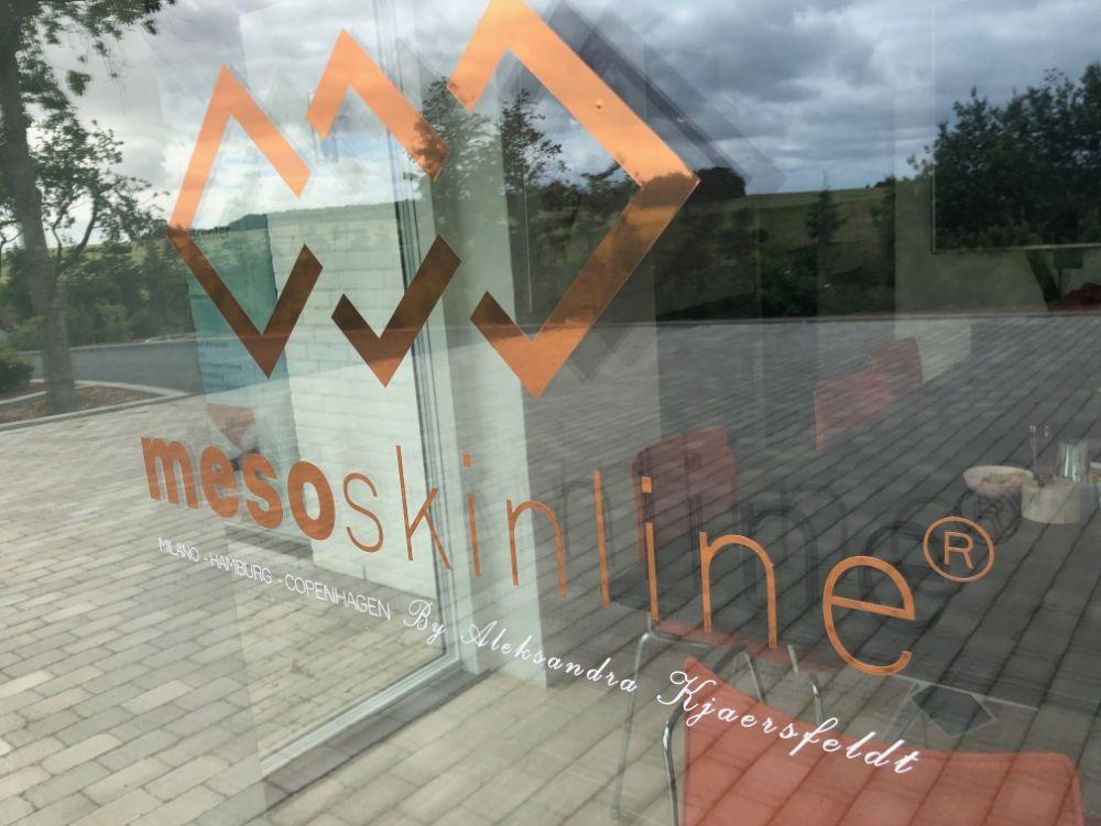 mesoskinline logo for window